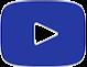 video-logo1